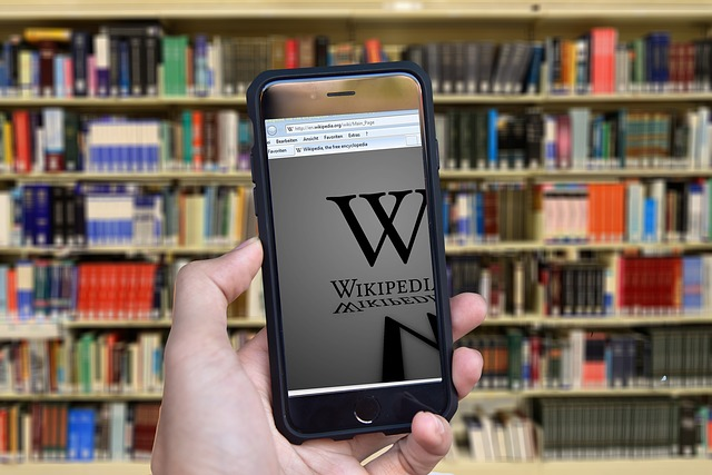 using wikipedia as a source in academic papers